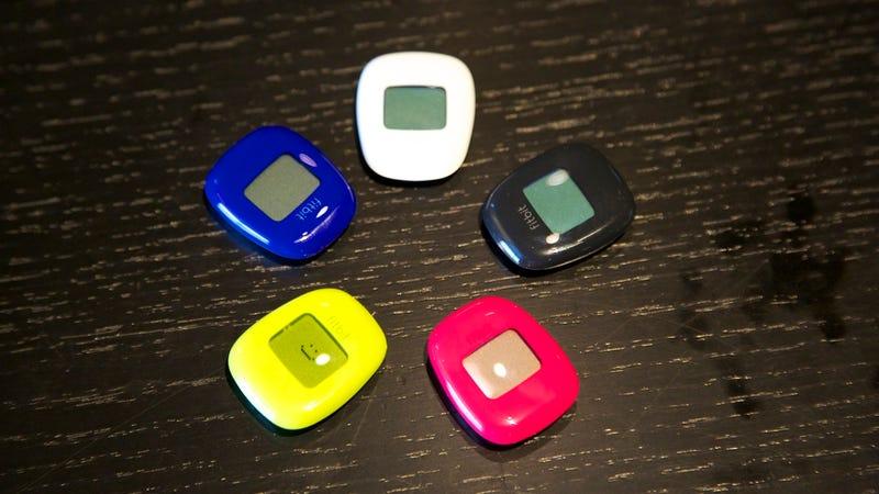 Fitbit Zip Gallery