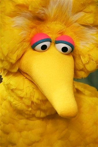 Big Bird On 40 Years Of Sesame Street Scandals