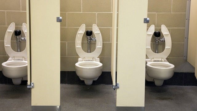 Leaving The Toilet Open Causes Everyone Else To Get The Vomits