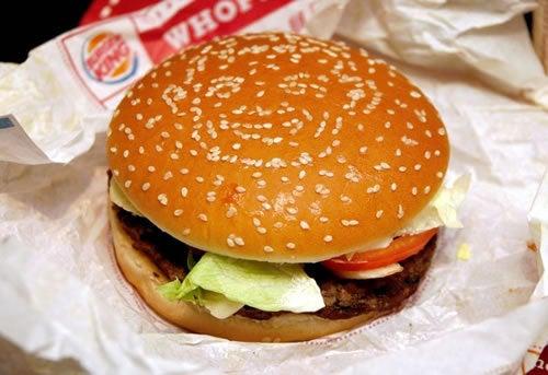 Introducing The Obama Burger