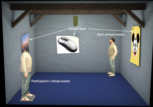 Researchers interact with rats by becoming virtual rats themselves