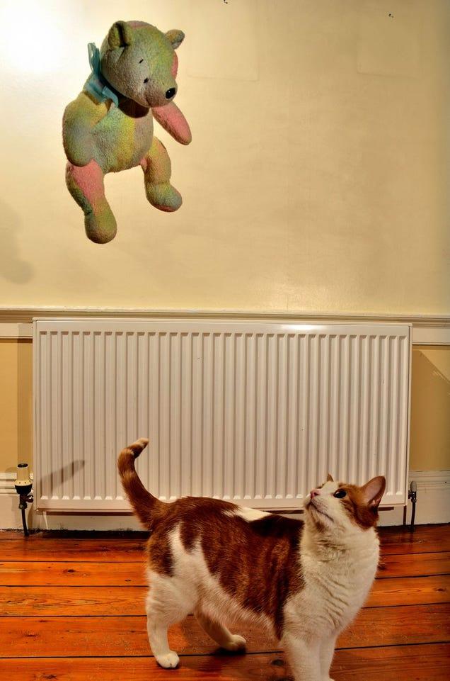 Shooting Challenge: Levitation, Gallery 1