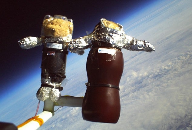 First Teddie Bear Astronauts Conquer Space