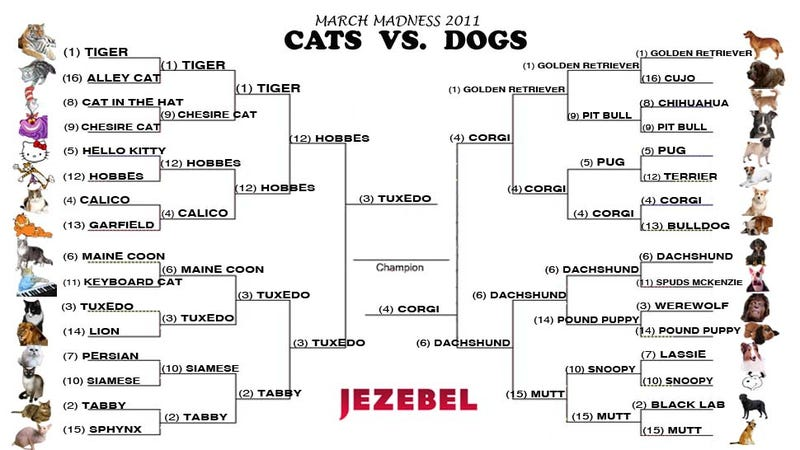 Cats vs. Dogs: Judgment Day Has Arrived