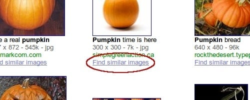 Google Images Adds Similar Search Function