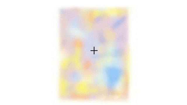 Watch This Image Disappear Before Your Very Eyes
