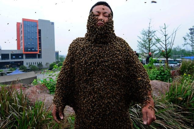 Covering Yourself with 460,000 Bees Looks Terrifying