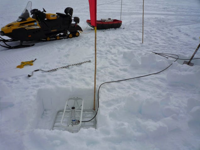 Researchers Use GPS to Track Antarctica's Ice Migration in Real Time