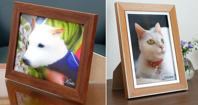This Website Turns Photos of Your Pets Into 3D Reliefs You Can Actually Pet