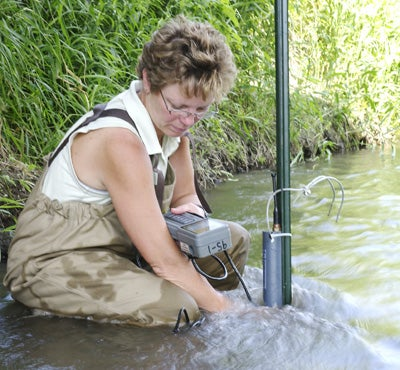 High Levels of Insecticide Found in Iowa Streams