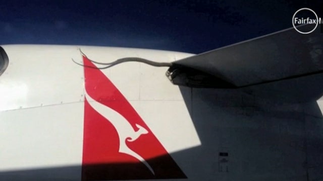 Snake on a Plane: Qantas Passenger Spots Python on Wing During Flight