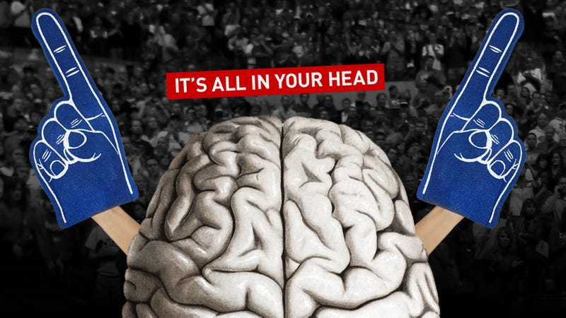 Why You're Still A Fan, Despite All The Crap: A Look Inside Your Brain