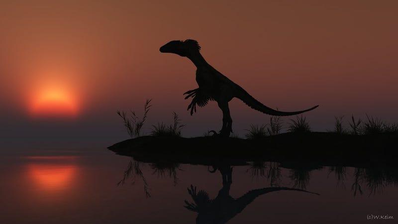 Even dinosaurs love a good sunset