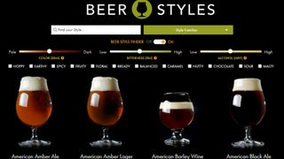 Find the Perfect Style of Beer to Drink with This Interactive Guid