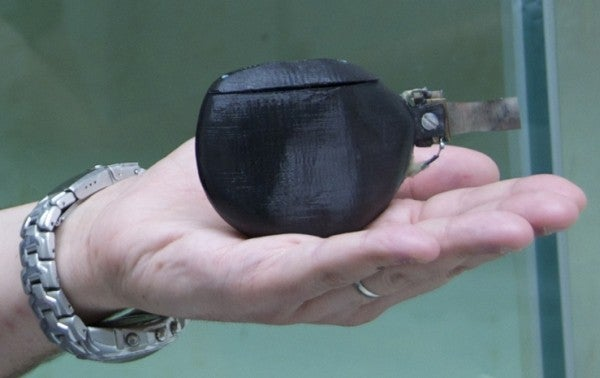 One Robot Fish to Rule Them All