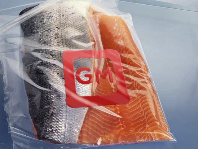 How Ginormous, Genetically Modified Antifreeze Salmon Will Change the Future of Your Food