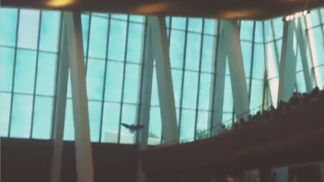 Oral Roberts Builds School Spirit With Bald Eagle Flying Into Window