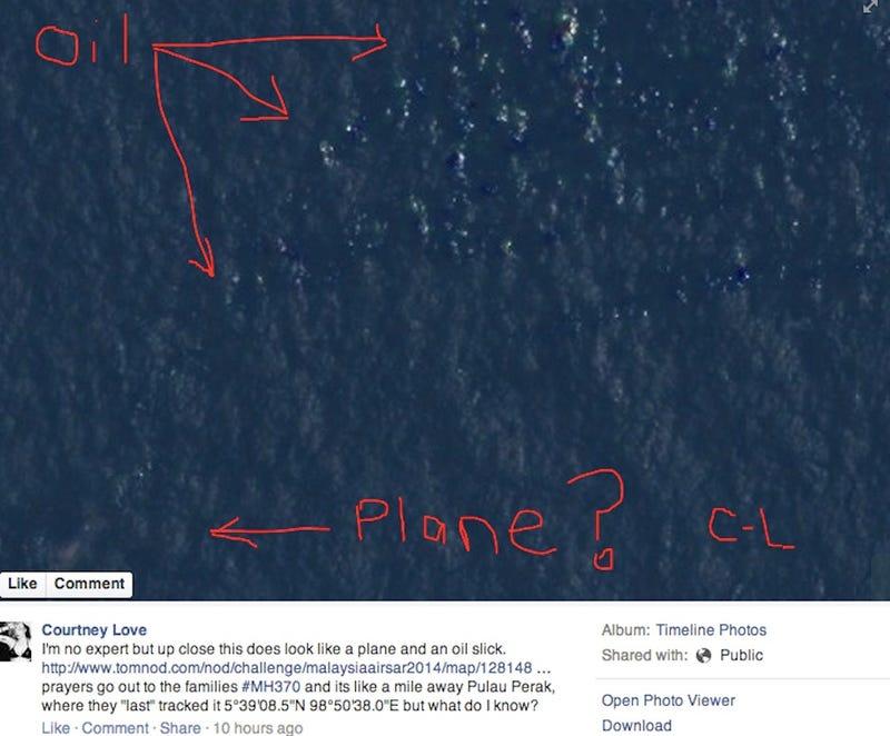 Courtney Love Thinks She Found Flight 370