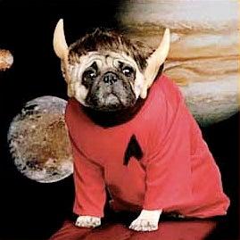 Star Trek Creator's Widow Left $4 Million To Her Dogs