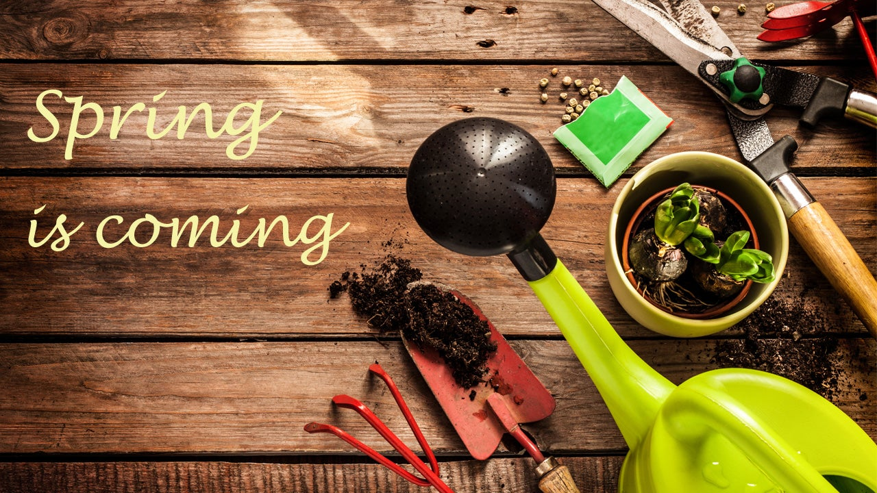 gardening lifehacker-top-10 outdoors weekend-roundup