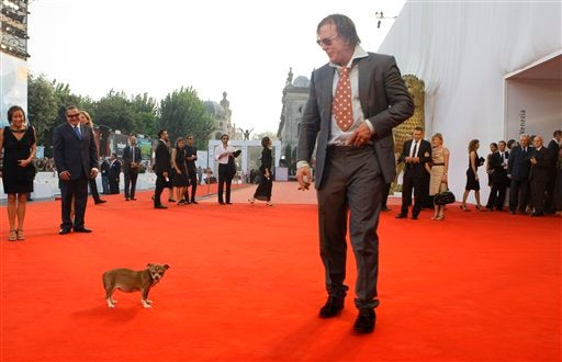 Mickey Rourke's Dog Goes To Heaven