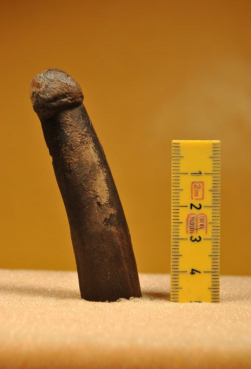 The Stone Age Swedish Penis Carving