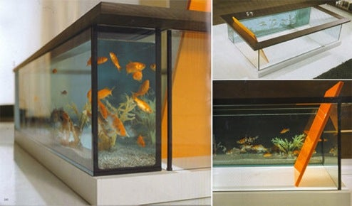 Moody Acquario: Bathing With The Fishes