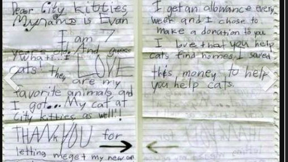The Best Kid Alive Donates His Allowance to Kitten Rescue Every Year