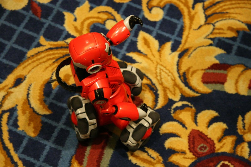 Wowwee Tribot For Sale - Kids Popular Toys Store