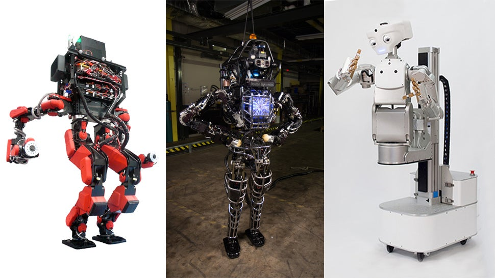 A Human's Guide to Google's Robot Army