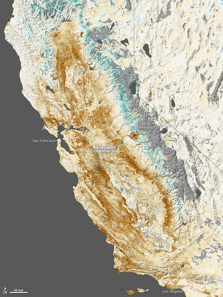 The terrible effect of one year of California's drought seen from space