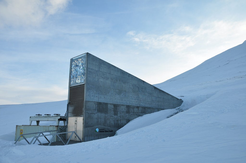 Doomsday Seed Vault Adds 20k New Crops—Including Beer Barley