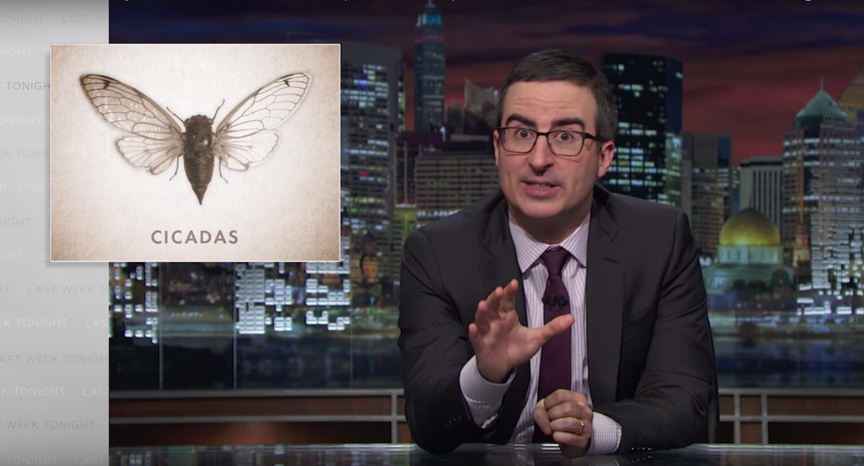 cicadas insects john-oliver last-week-tonight-with-john-oliver video