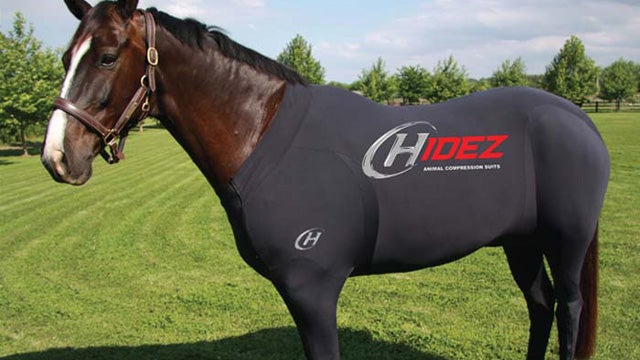 What the F*ck Is This Full-Body Horse Suit From Hell?