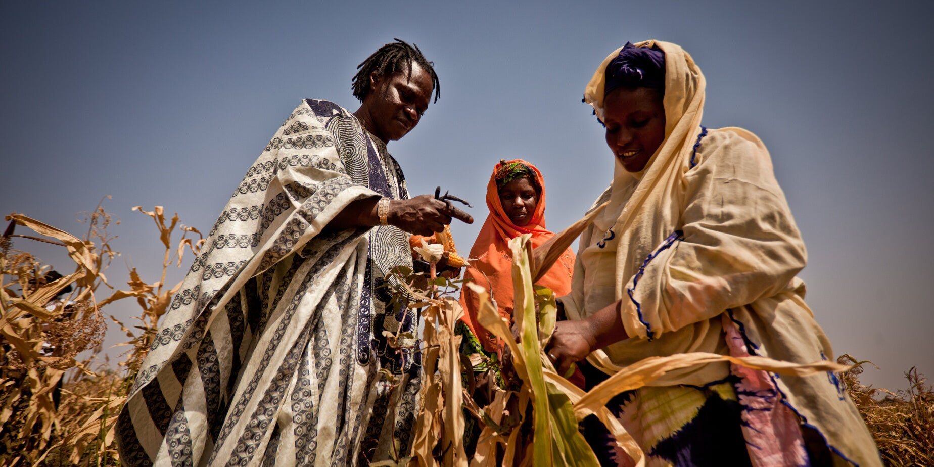 How Low-TechFarming Innovation Can Make African Farmers Climate-Resilient