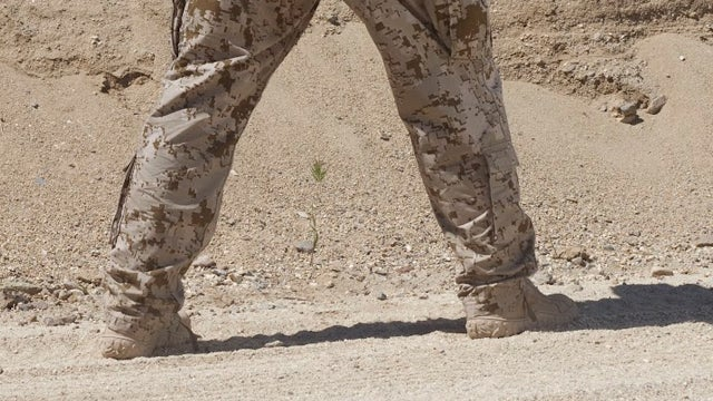 The History of Invisibility and the Future of Camouflage