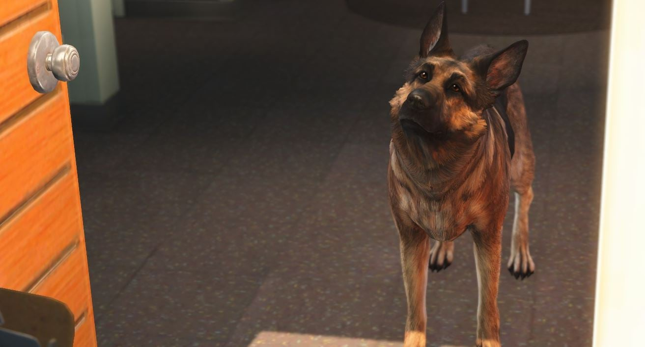 Mod Lets You Play As Dogmeat, The True Hero of Fallout 4