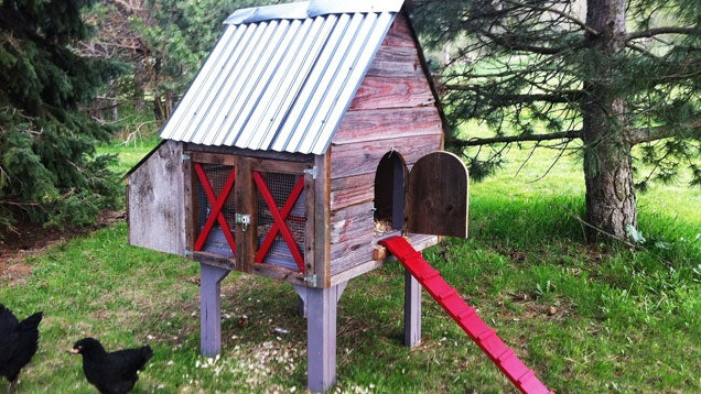 Build a chicken coop for your free range flock for Free range chicken coop plans