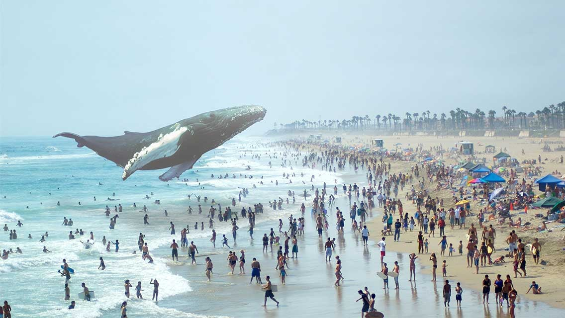 How Magic Leap Is Secretly Creating a New Alternate Reality