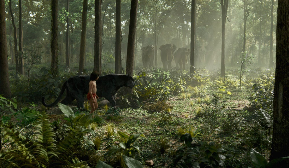 Disney's Jungle Book Is 100 Per cent Green Screen, But It Looks Realer Than Real Life (UPDATED)