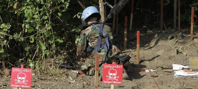 The Newest Weapon in the Fight Against Land Mines Could Be...Plants