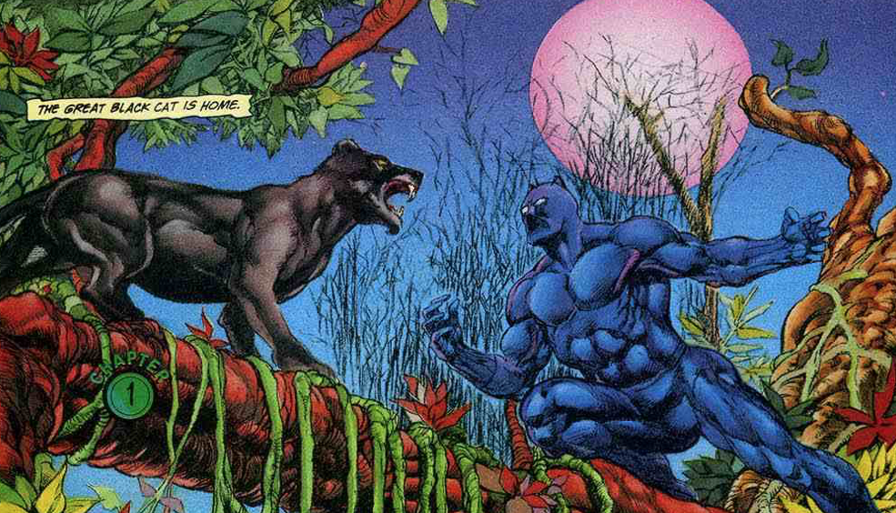 The Politics of Marvel's Black Panther