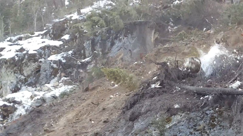 This Is How Fast a Little Landslide Turns Into a Full-On Shitstorm