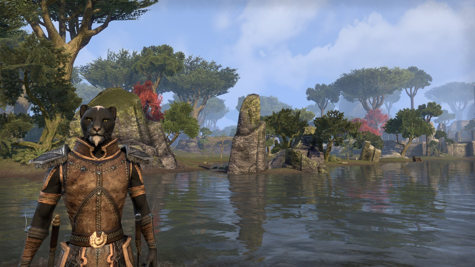 Elder Scrolls Online MMO Log The World Is My Cat Box Kotaku Australia