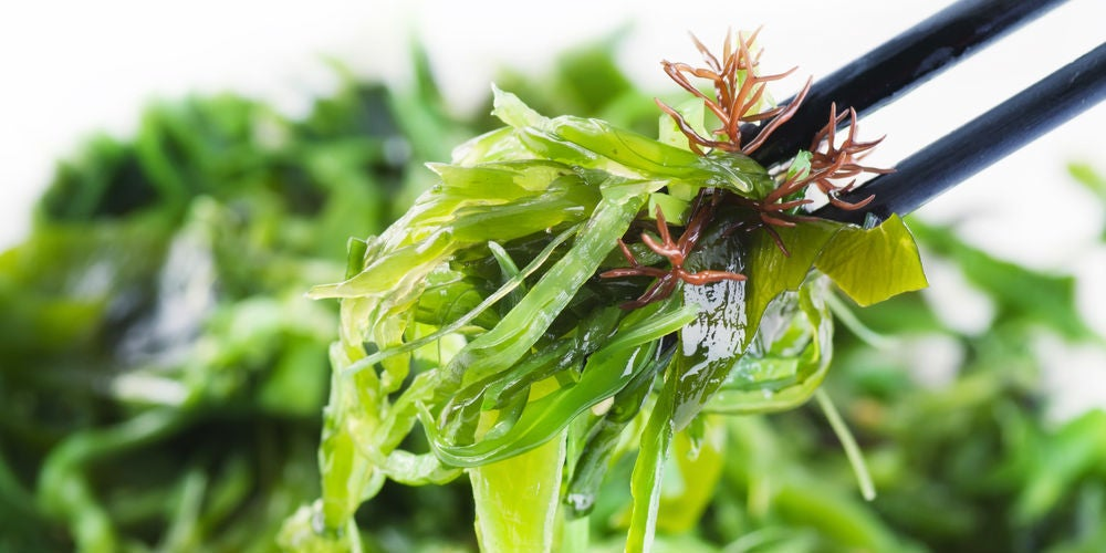 From Ice Cream to Toothpaste: Seaweed's Hidden Uses