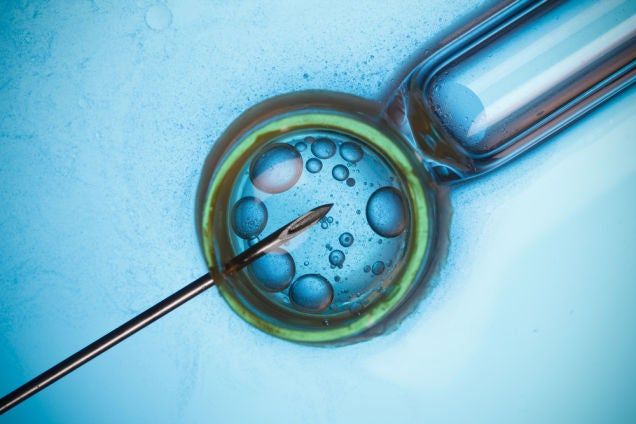 Only about 2000 babies have been born using cryogenic egg-freezing