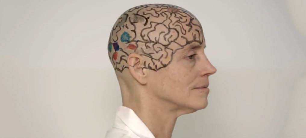 An MIT Professor Shaved Her Head To Teach You Neuroanatomy