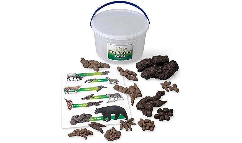 We Spent 10 Minutes Thinking Up Headlines For This Bucket Of Poop