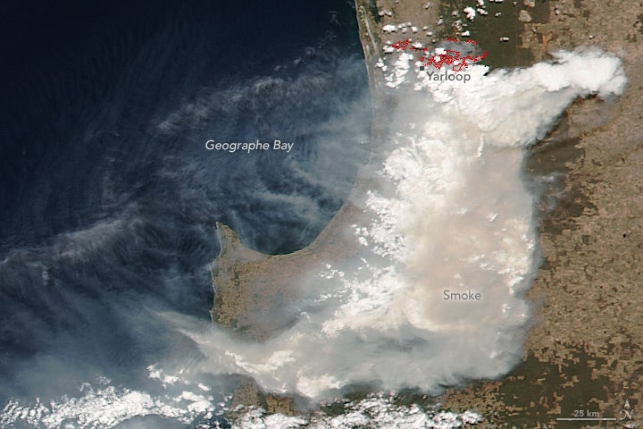 Remember That Crazy Wildfire Season the US Just Had? Now Australia's Having One.