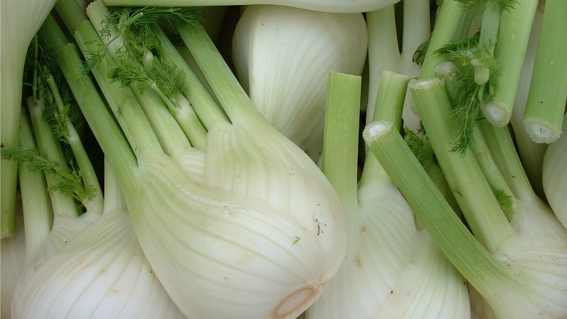 Add Choped Fennel to Your Smoothies for a Licorice-Like Flavour Boost